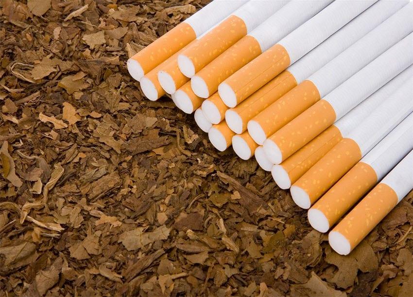 Migori tobacco farmers forced into SACCOs
