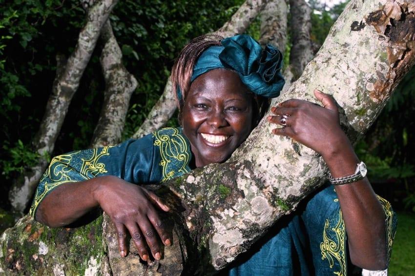 Limuru Road to be renamed Wangari Maathai Road