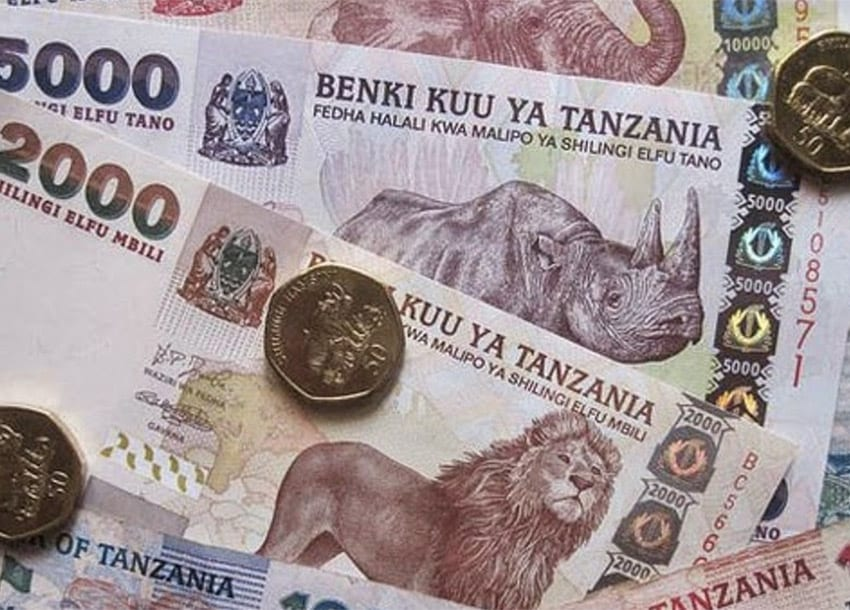 Tanzania to launch derivatives trading for stocks, forex