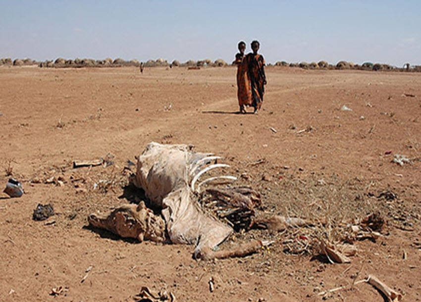 Hunger looms over Ethiopia as El Nino drives drought