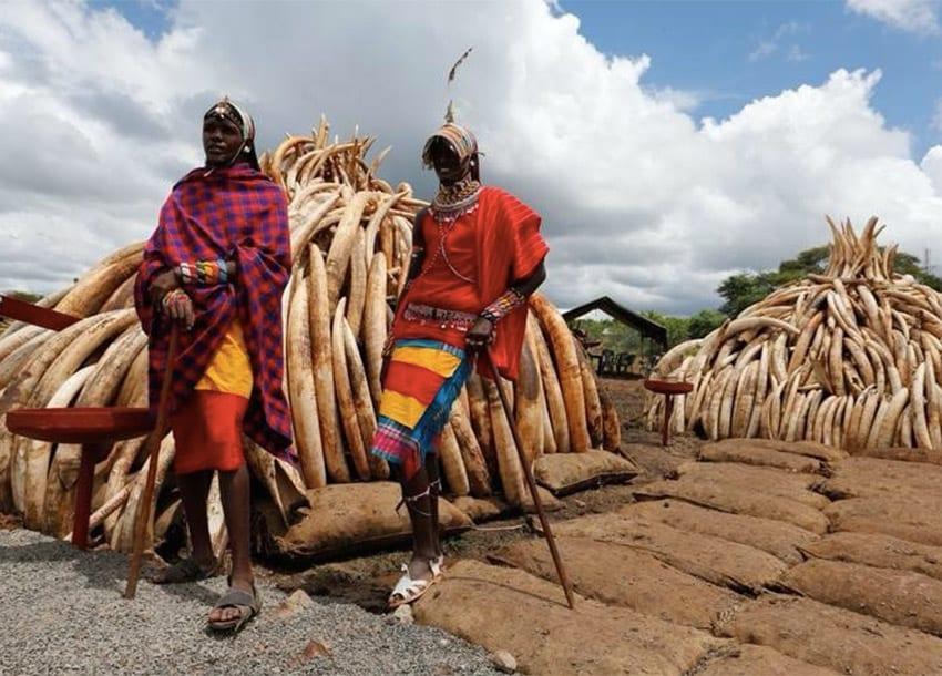 Kenya's rapid urbanisation takes toll on Maasai communal land