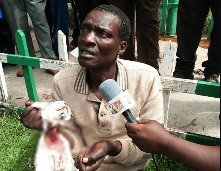 Nakuru man admits to slaughtering 1,000 cats, selling meat