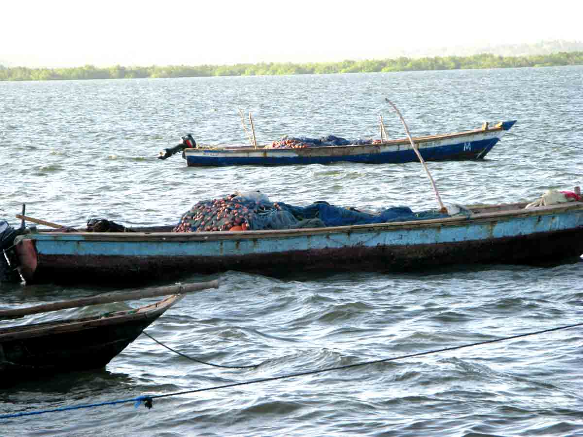 Court frees 16 Tanzanians accused of illegal fishing in Kenya