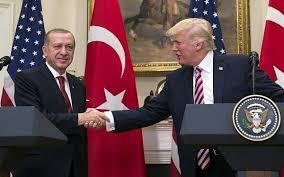 Turkey's President Erdogan says may meet U.S. President Trump in Paris