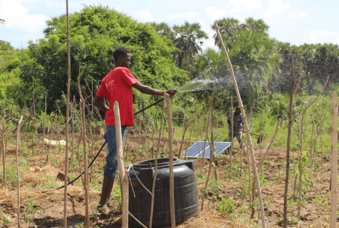 How group in Lamu is using solar energy to change agriculture