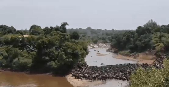 Tourism CS Najib Balala demands closure of hotel for blocking wildbeest migratory corridor at Mara River