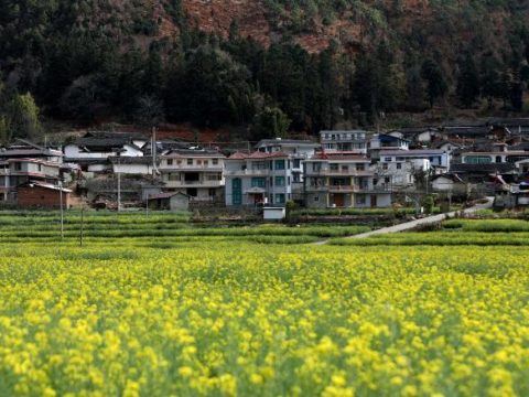 These Chinese villages are paying couples to have more children