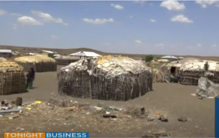 Drought situation: Over 250,000 households in need of aid in Marsabit