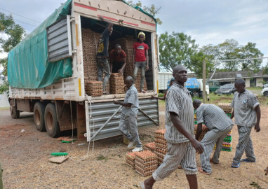 Police seize 7,800 crates of eggs worth Ksh.2.7 million in Homa Bay